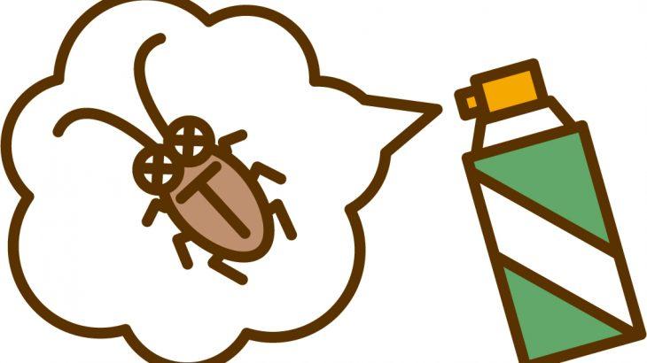 【読者体験談#12】虫嫌いは注意!スーパーの裏側は〇〇〇リだらけ!